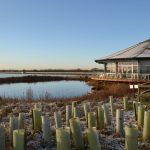 Abberton Reservoir Nature Discovery Park